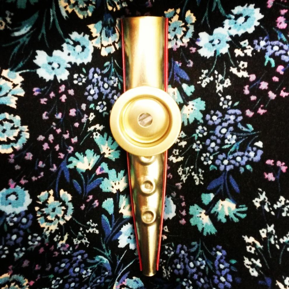 "The ""golden"" kazoo Anis gave me"
