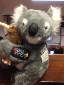Kiwi_Koala
